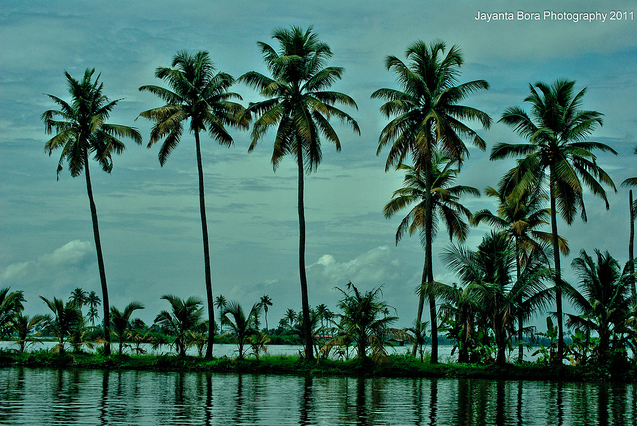 kerala backwaters alleppey kumarakom