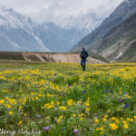 Miyar Valley Trek: Infinite Plains, Infinite Escapades