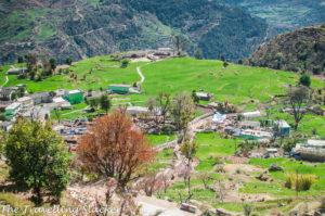 Sari Village in March