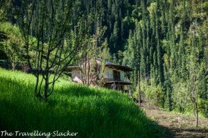 Towards Bashleo Pass, Tirthan