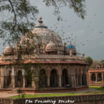The Tourists' Guide to Surviving Delhi