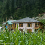 Trek to Grahan: Far from the Madding Crowd
