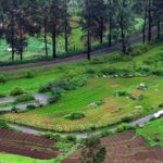 What not to miss in Ooty