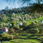Pithoragarh: The Rite of Spring