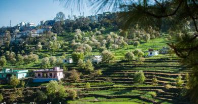 Pithoragarh: The Rite of Spring