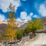 An Autumnal Meander along the Leh-Manali Highway