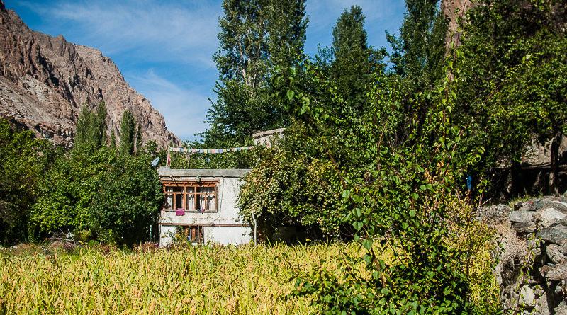Into The Brokpa Country: Dah, Hanu, & Beama