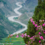 Keylong & Lahaul Travel Guide