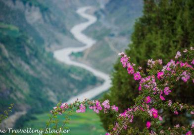 Keylong & Lahaul Travel Guide