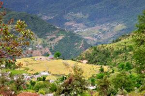 Sari Village Early May