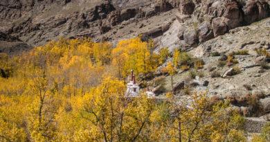 Hemis Monastery: Salvation in Autumn