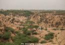 How to visit Chambal Ravines (Beehad)?