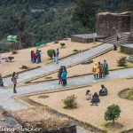 Rabdentse Ruins: The Second Capital of Sikkim