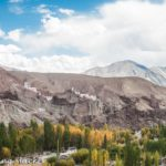 Palaces & Forts to see during Ladakh Trip