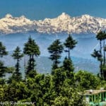 Patal Bhuvaneshwar: The Ultimate Kumaoni Delight No One Told You About