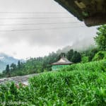 Pekhri Village: The Other Route from Gushaini