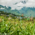 Deori & Manyashi: Unexpected Village Hikes in Sainj Valley