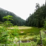Pundrik Rishi Lake, Sainj: Trek from Jhili to Upper Neahi