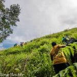 Netravati Peak Trek: Serenity of the Shola