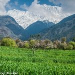Spring in the Himalayas: Where to Go in March-April?