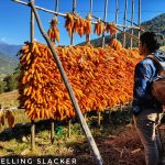 Dirang Valley Trek: From to Azure to Aquamarine