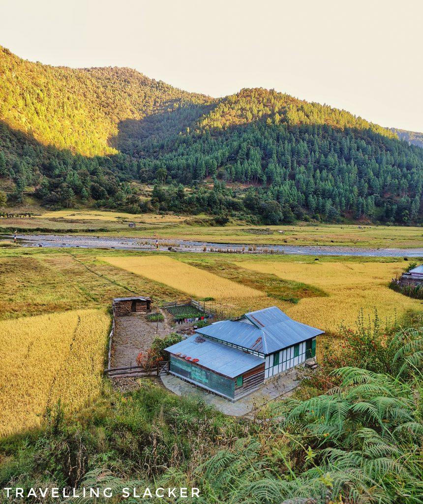 Sangti Valley deserves more exploration.