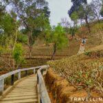 Tipam Hills: Short Hike, Loaded History
